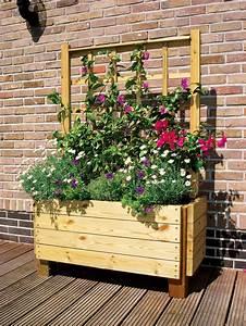 Bac A Fleur En Bois Pas Cher : jardiniere avec treillis bois free jardinire rserve dueau ~ Dailycaller-alerts.com Idées de Décoration