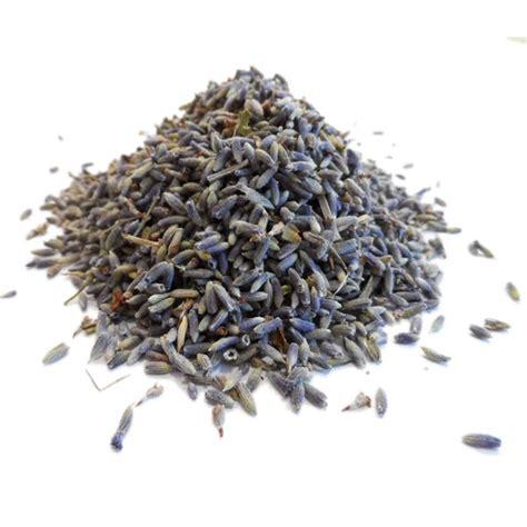tisane de lavande bio lavandula angustifolia fleur en vrac
