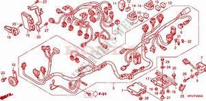 Wire Harness For Honda Cb 600 F Hornet Abs 2007   Honda