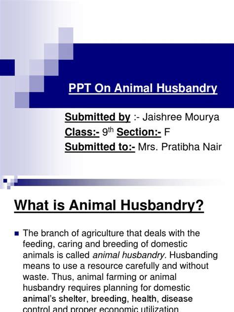 animal husbandry coconut jute