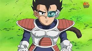 Dragonball Z Vegeta's Brother | Flickr - Photo Sharing!
