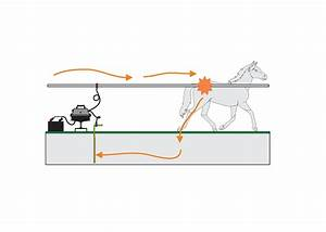 Does My Electric Fence Need To Be A Circuit