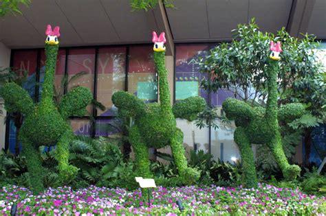 flower garden 4