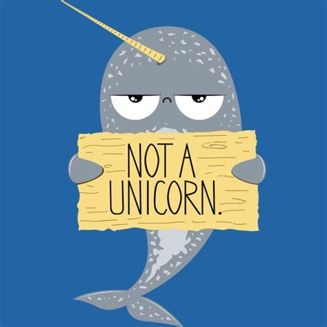 Narwhal Meme - narwhal not a unicorn t shirt confused unicorns and stuffing