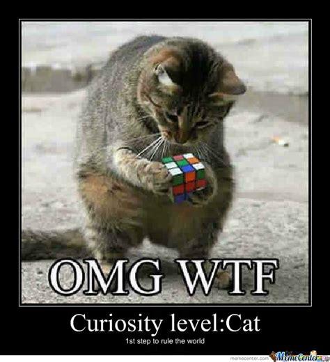 Curious Meme - curious cat by michael chane meme center