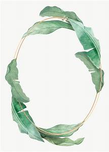 Templates For Website In Php Free Download Tropical Leaves Frame Free Stock Illustration 594534