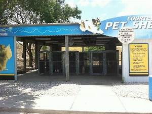 Half of the outdoor kennel picture of seaworld san for Dog house san antonio