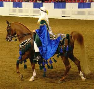 Arabian Horse Native Costume