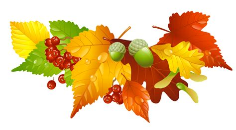 Image result for autumn leaves clip art
