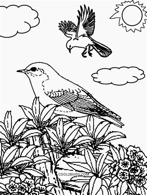 printable nature coloring pages  kids coolbkids