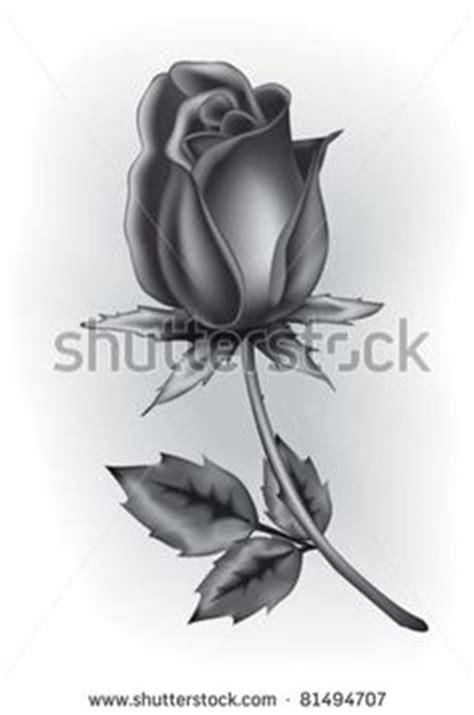 dark closed rose laying pencil drawings pinterest