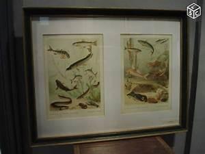 Grand Cadre Pas Cher : cadre photo 20 x 30 ma jolie toile ~ Teatrodelosmanantiales.com Idées de Décoration