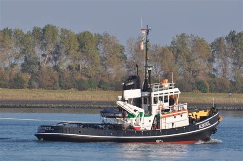 Sleepboot Steenbank by Albatros Met Steenbank Naar Maassluis Tugspotters