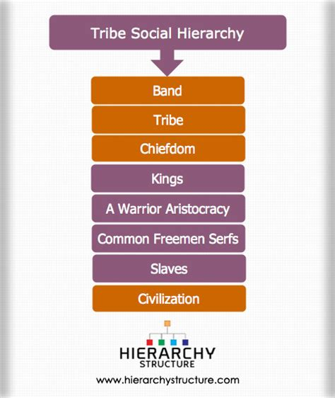 Tribe Social Hierarchy Structure | Hierarchystructure.com