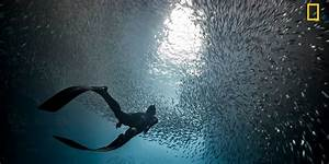 10 entries from National Geographic Travel Photographer of ...