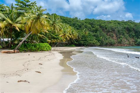 Useful Information About Holidays In Grenada Just
