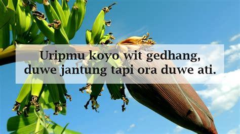 Quotes jawa lucu dan artinya kata kata mutiara. Kata Mutiara Bahasa Jawa Lucu dan Inspiratif | TopLucu
