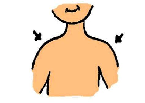 shoulder clipart clipground