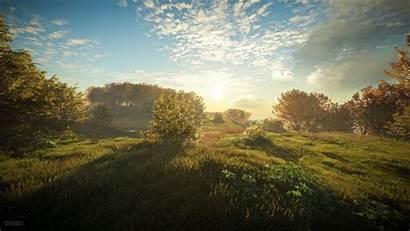 Wild Call Wallpapers Thehunter 4k Sun Morning