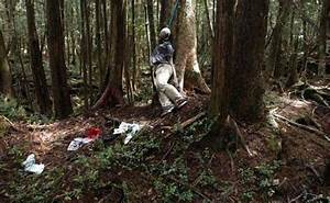 Japan's Suicide Forest | Creepypasta Wiki | FANDOM powered ...