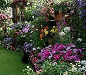 Blumen Für Garten : bunte blumen f r cottage garden einlegen garten pinterest bunte blumen einlegen und bunt ~ Frokenaadalensverden.com Haus und Dekorationen