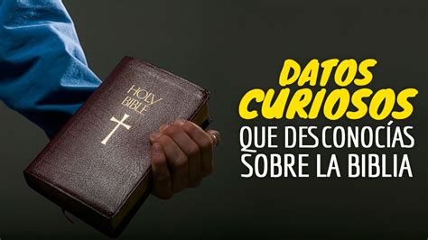 10 Datos Curiosos Que Desconocías Sobre La Biblia - YouTube