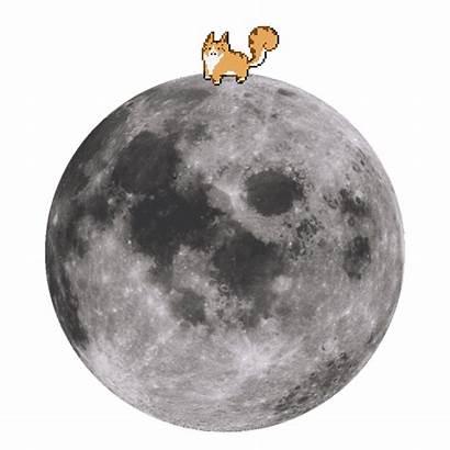 Cat Funny Animated Pixel Gifs Kawaii Cats