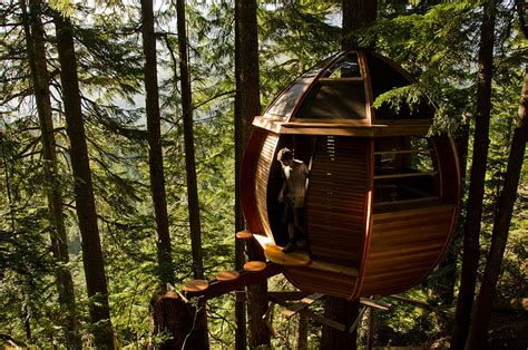 amazing treehouses    world bored panda