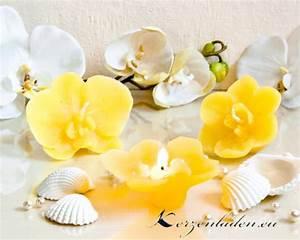 Orchidee Klebrige Tropfen : 2 schwimmkerzen orchidee mit duft kerzen sets tischdeko ~ Lizthompson.info Haus und Dekorationen