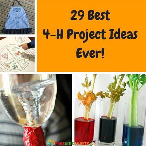 4 h craft project ideas 29 best 4 h project ideas allfreekidscrafts 5821