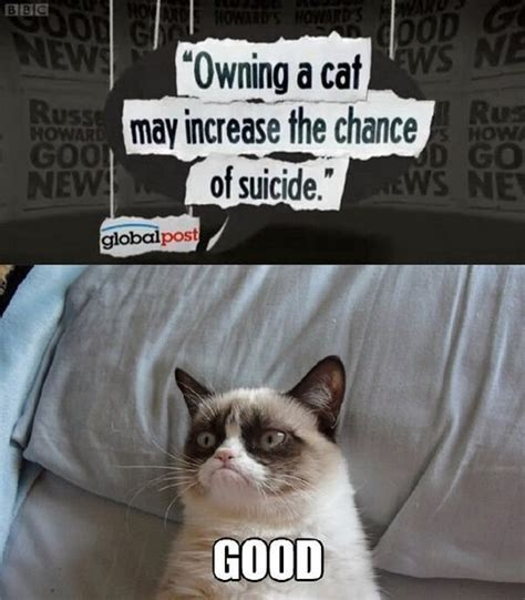 Grumpy Cat Good Meme - meme can t believe how strange it is to be anything at all