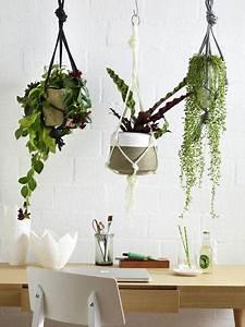 Hängende Pflanzen Für Draußen : frische deko ideen mit pflanzen f r drinnen und drau en ~ Sanjose-hotels-ca.com Haus und Dekorationen