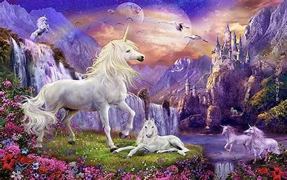 Unicorn Unicorns Backgrounds Desktop Fantasy Flowers Background
