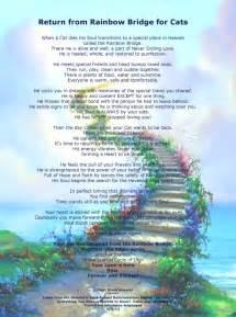 rainbow bridge for cats rainbows and quotes quotesgram