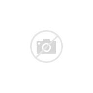 Red and Gold Metallic Fabric