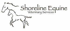 Equine Veterinary Symbol | www.imgkid.com - The Image Kid ...