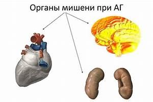 Гипертония потоотделение