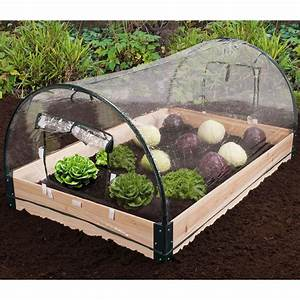 Carre De Jardin Potager : inkazen carr potager bois serre 120 x 80 cm carr ~ Premium-room.com Idées de Décoration