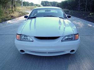 1995 Mustang Cobra R Hood And Front Bumper. | 95 Cobra R Hoo… | Flickr