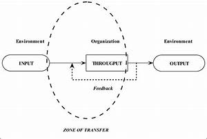 Zone Of Transfer In The Open System Theory