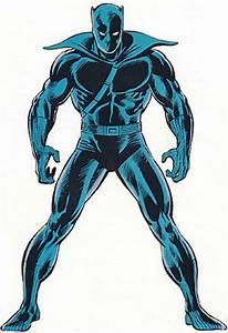 Black Panther Marvel Comics T39Challa Avengers C