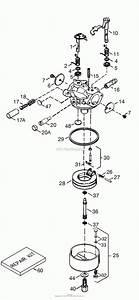 Small Engine Carburetor Diagram Free Image Diagram