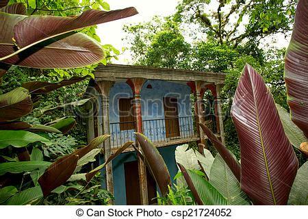 abandoned house   jungle blue abandoned house  tropical jungle