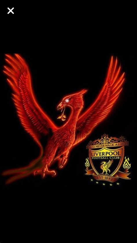 pin  images  alliterations   liverbird