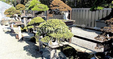 Rechen Für Zen Garten by Zen Garten 187 Luxurytrees 174 Schweiz