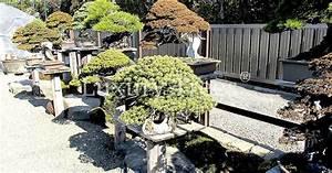 Was Bedeutet Zen : zen garten luxurytrees schweiz ~ Frokenaadalensverden.com Haus und Dekorationen