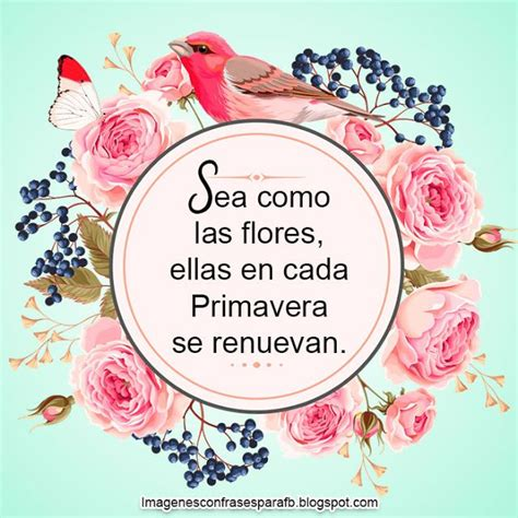 20 Frases de la Primavera Frases de flores Citas de flores