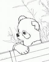 Panda Coloring Printable Pandas Realistic Bamboo Sheets Drawing Adults Bear Animal Eat Albanysinsanity Getcolorings Adult Getdrawings Abraham Lincoln Pdf Wonderful sketch template