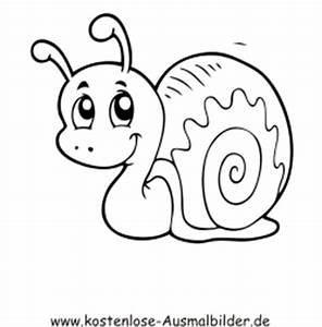 Bastelvorlagen Tiere Zum Ausdrucken : ausmalbilder schnecke 5 tiere zum ausmalen malvorlagen schnecken ~ Frokenaadalensverden.com Haus und Dekorationen