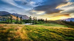 New Zealand Field Yellowed Grass Pond Trees Mountains